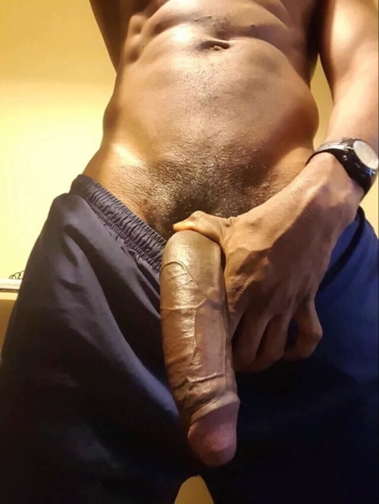 bite xxl gay escort noire paris